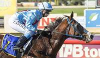 Chaos stakes his claim for Provincial Championships
