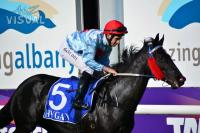 Ascot beckons for Captivated Point
