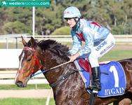 Shelby and Faulty faultless at Pinjarra
