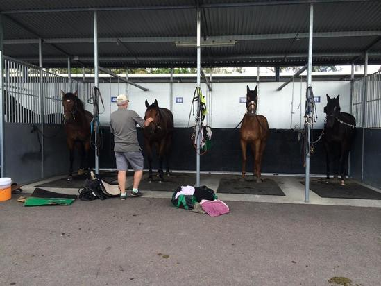 Stable has busy couple of days ahead