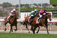 Spanish Reef wins at Flemington
