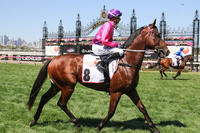 Keys 3YO's tackle Caulfield stakes races