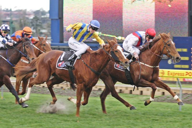 Afterburn - Moonee Valley.JPG