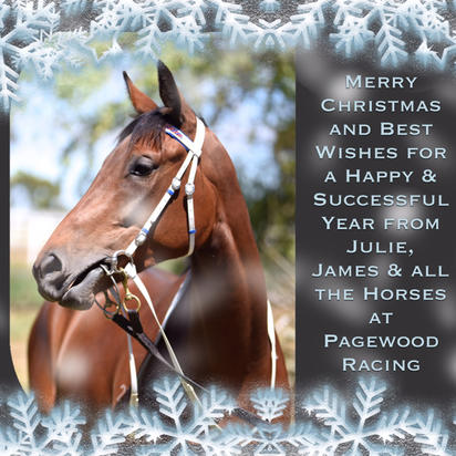 Merry Christmas from Pagewood Racing