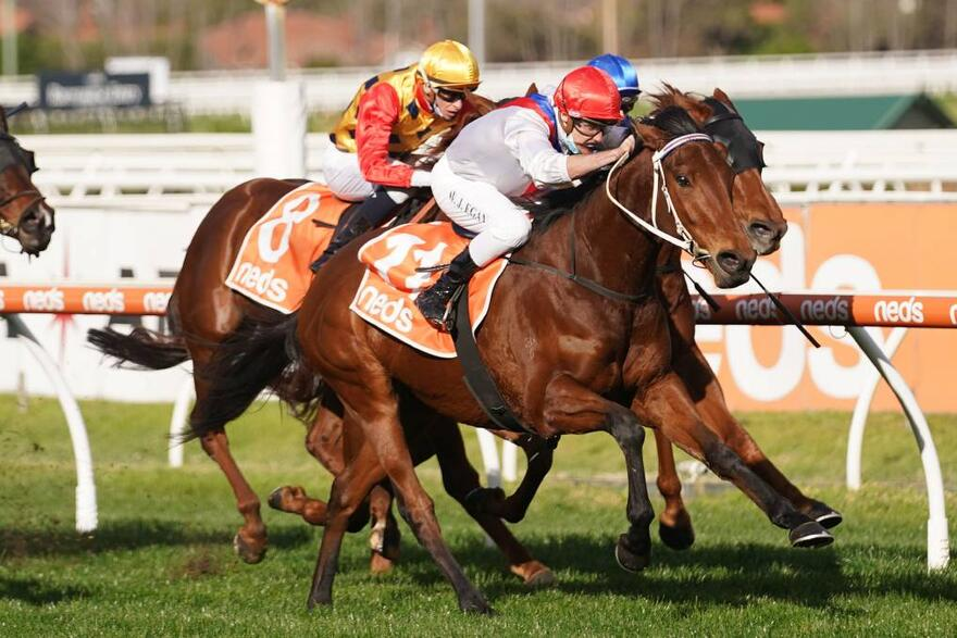 Double You Tee heads Ballarat's Gold Nugget line-up
