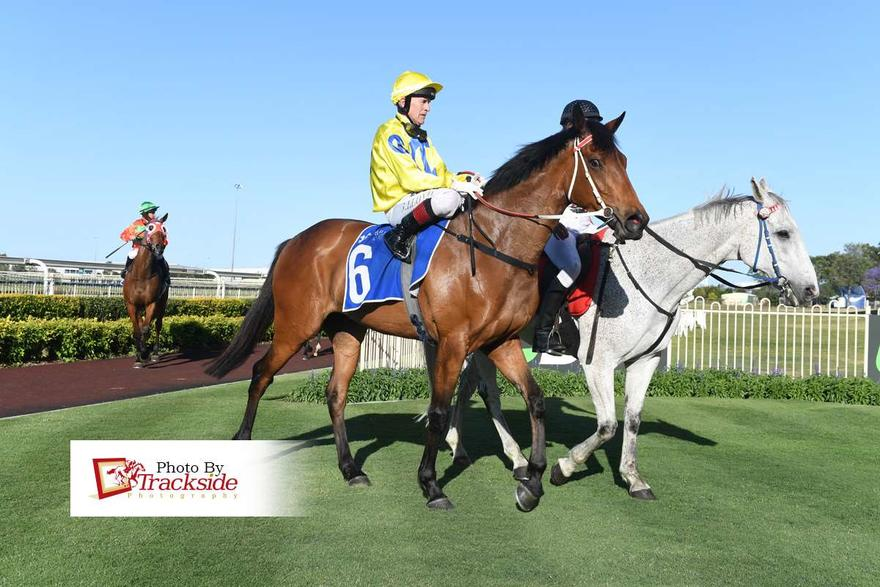 Thermal Unit Wins At Doomben