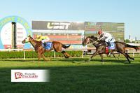 UMGENI Wins Again At The Gold Coast!