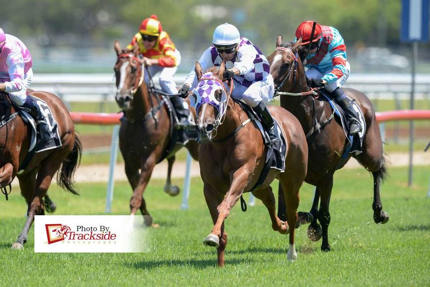 Dream Starlet's Dream Debut For New Stable