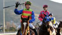 Merrick's Beauty on track to tackle feature mares' events
