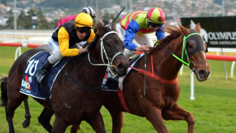Perun gives trainer a welcomed tonic