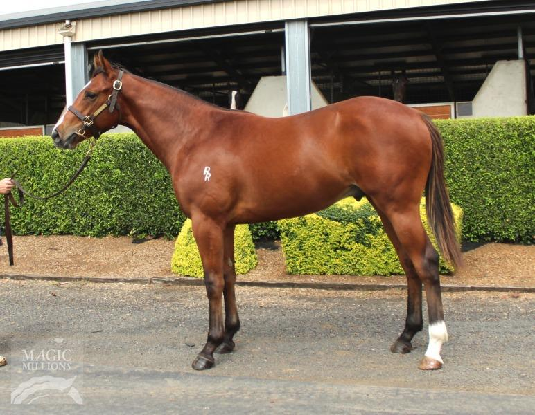 Smart Missile colt available