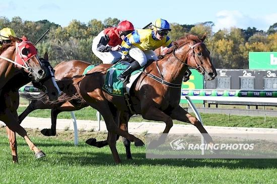 Magnesprit back to his best for Sell