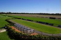 Bendigo racecourse.jpg
