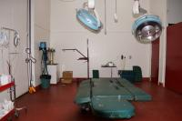 Bendigo Equine Hospital.jpg