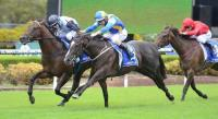 Music Magnate hits right note at Rosehill