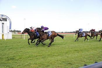 Dream win for honest mare at Kembla