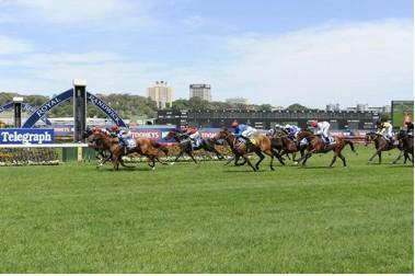 WINNING MELBOURNE CUP DAY -  WINNING DOUBLE