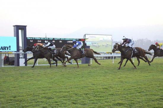 Princely wins in August 2013