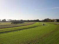 Warwick Farm Course.jpg
