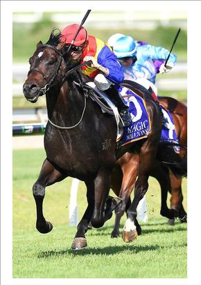 SUBERB WIN BY PIERATA AT DOOMBEN