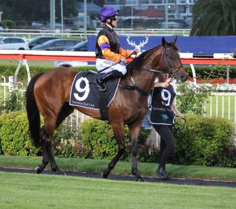 PHOEBE FIRST UP AT CANTERBURY