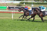 PIERATA RUNS WELL IN THE BILL RICHIE