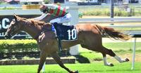 Ruby Red Hearts books winter campaign after debut win at Doomben.