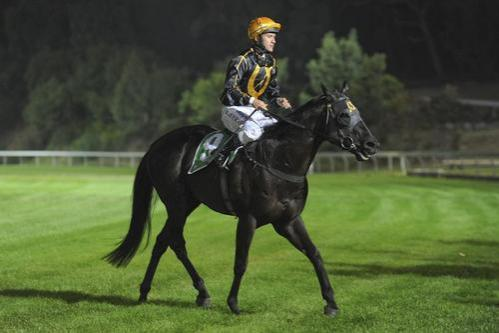 Kaitoa wins at Cranbourne's First Night Meeting