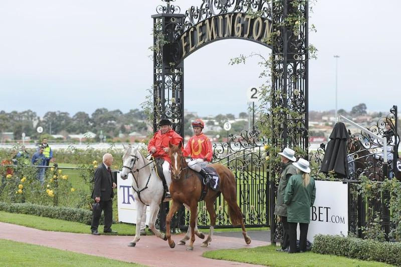 Cyclone Andy Bolts in at Flemington