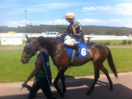 Wet Weapon to strike at Werrribee