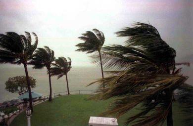 Cyclone Warning at Sandown