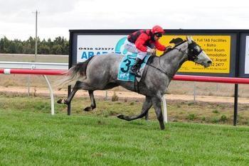 Remount Reunites with Cranbourne