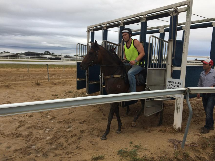 Trotter Racing January 2017 Update