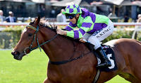 I Am A Star To Resume In Group 2 Rubiton Stakes