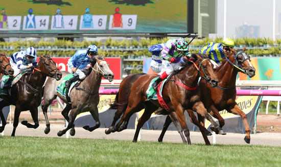 Tough Group 2 Win For Nichols' Star