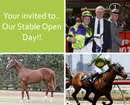 Stable Open Day!!