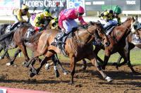 Pelikaan Straat flies in home track success