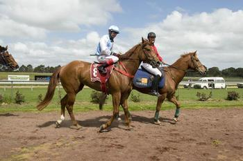Patient owners rewarded with Blonde victory