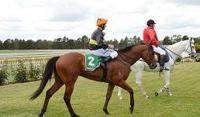 Escadrille quick off the mark with new stable