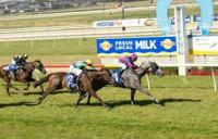 Panther pounces with overdue win