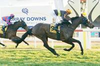 Stablemates land Swan Hill quinella