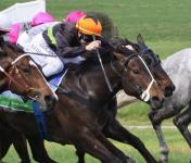 Nowhere Man pays price for maiden win