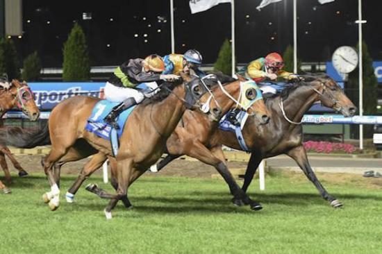 Holy Heart thrills Cartwright with explosive city win
