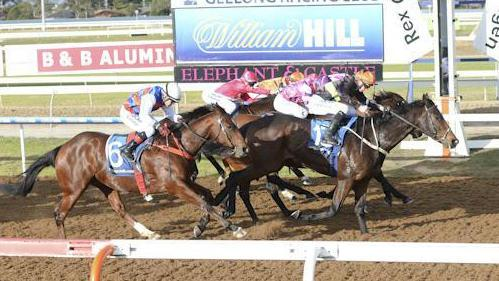 Surfside wipes out punters