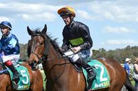 Jockey makes amends on Royal Enigma