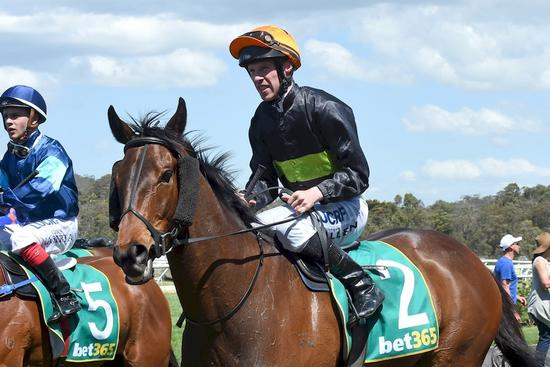 Jockey makes amends on Royal Enigma