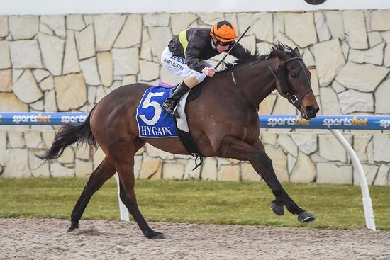 Unlucky Royal Enigma back on winners list