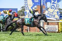 Clever George outsmarts rivals at Terang