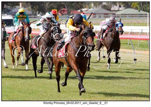 Princess Blitz For Gawler Supremo