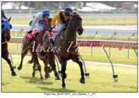 Minervini double as Triple Tee and Little House salute
